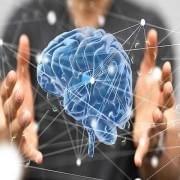 PNL – Programação Neurolinguística | 1ª edição